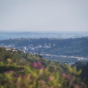 vue depuis la terrasse par WildRoses photography
